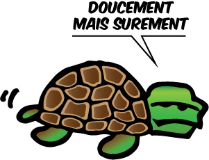 5.Tortue Doucement mais sûrement