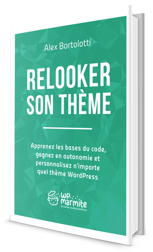 livre_Alex-Bortoletti_relooker_son_theme_WordPress